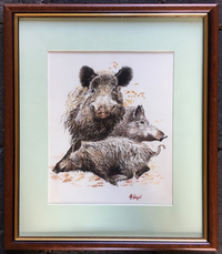 V-05-126 Watercolor of Wild Boar by French Artist, Henri Faljul