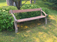X-99-359 19th Century French Faux Bois Garden Bench
